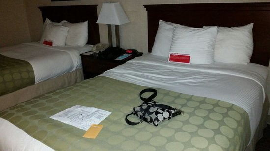 Ramada Waukegan/Gurnee : Decent looking beds but they are hard