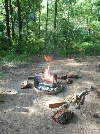 Buffalo National River Kyle's Landing Campground: Campfire