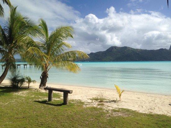 Eden Beach Hotel Bora Bora: Vista desde nuestra cabaña.