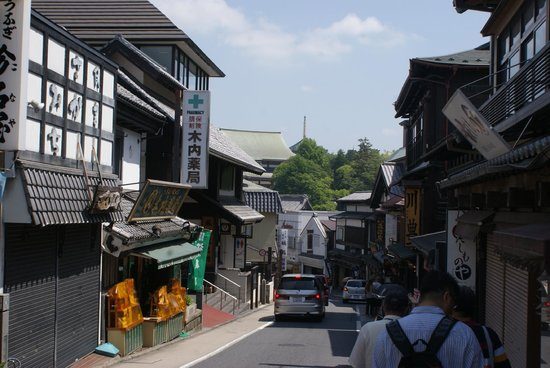 Naritasan Omote Sando: part of the road