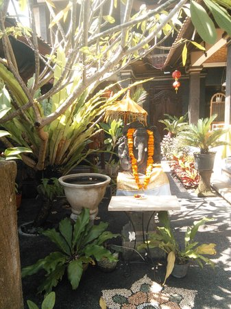 Jangkrik Homestay: beautiful garden