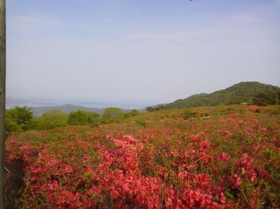 Mt. Tokusenjo: 徳仙丈展望台