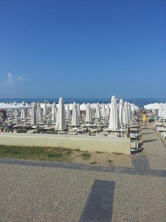 Larissa Beach Club: Утро, мест много