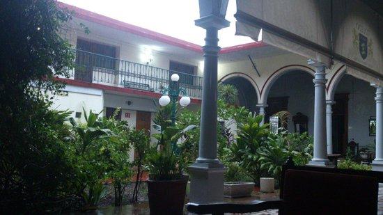 Hotel Posada Toledo & Galeria: Lleno de plantas, muy bonito.