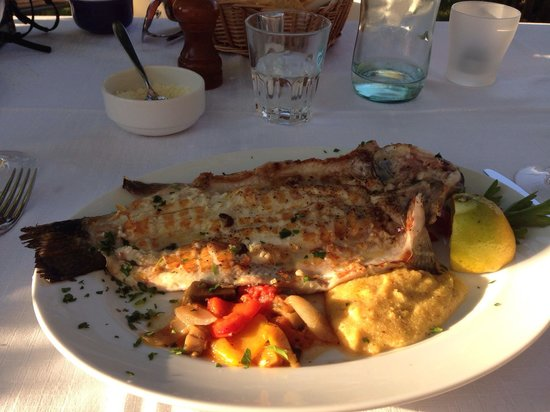 Osteria Le Servite : Grilled fish. Great meal!