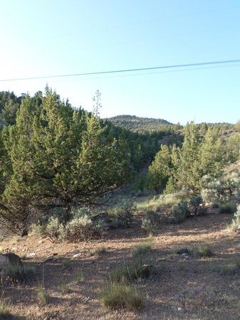 Prineville Reservoir State Park: Looking Up the Canyon