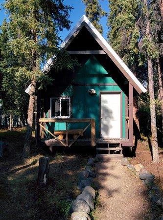 The Perch Resort: Cabin #15!