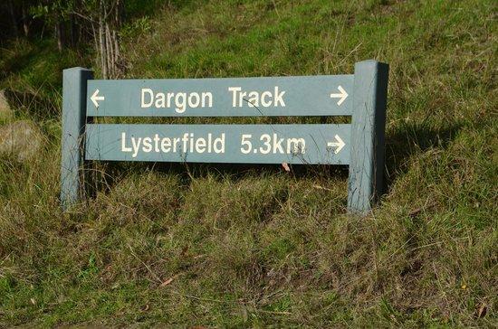 Birdsland Reserve: Start of the Dargon track