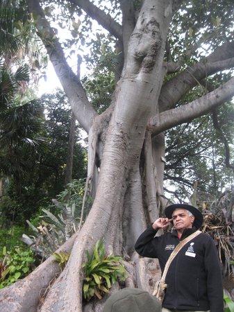 Royal Botanic Gardens Melbourne : Aboriginal Heritage Walk