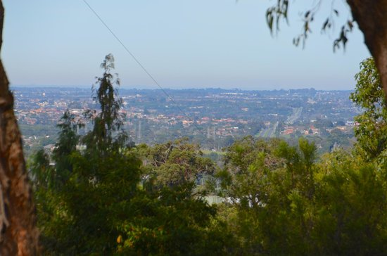 Birdsland Reserve: Looking out over the eastern suburbs