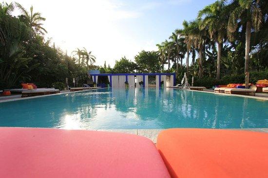 Shore Club South Beach Hotel : Pool