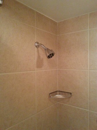 DoubleTree by Hilton Hotel Salt Lake City Airport: Room 125, showerhead wouldn't stay up