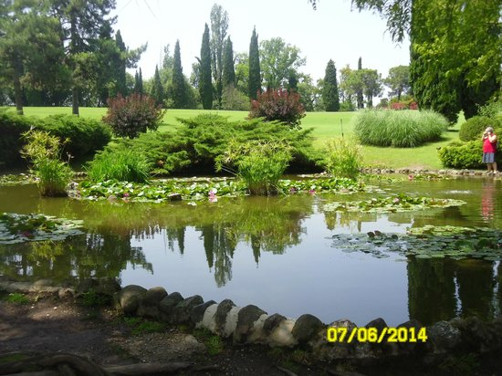 Stagno picture of parco giardino sigurta valeggio sul for Stagno giardino