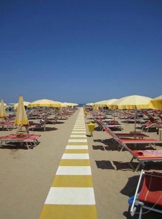 Hotel Blue Moon: Spiaggia