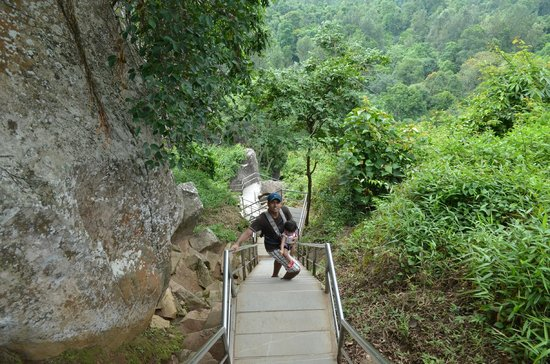 Edakkal Caves : Enroute to the caves