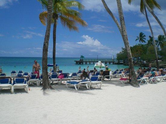 Dreams La Romana : The Beach
