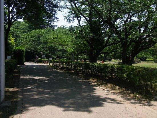 Sakura Castle Site Park: 02 三の丸跡