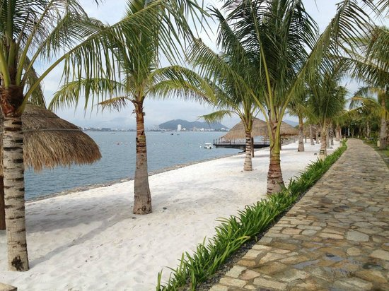 Amiana Resort : nice beach