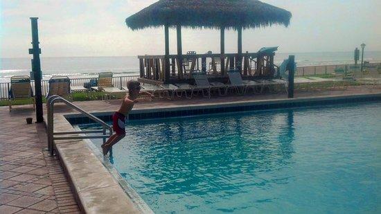 Hawaiian Inn: pool view