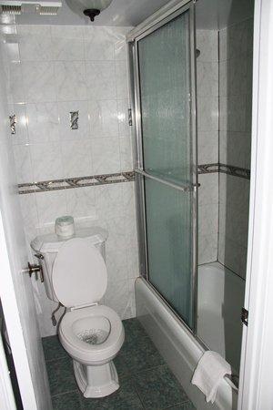 Hawaiian Inn: shower rm 340