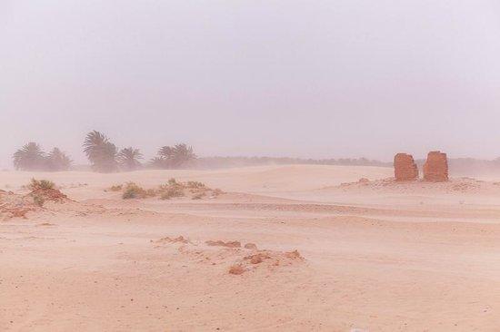 Sahara Desert : ветер в пустыне