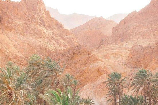 Sahara Desert : красивый вид