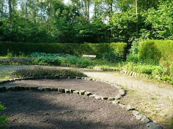 Gaasperplas Park : Уединенная круглая поляна