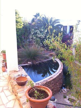 Casa Biank: El patio al que dan todas las habitaciones es un oasis escondido en el valle de Rodalquilar