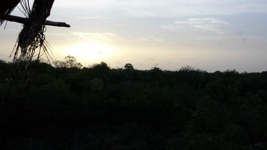 Sandos Caracol Eco Resort: Uitzicht vanaf de kamer