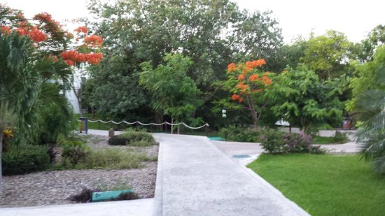 Sandos Caracol Eco Resort: Park en tuinen