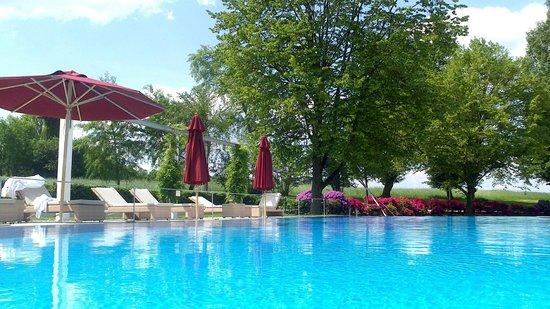B&O Parkhotel: Garten mit Pool