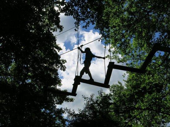 野外丛林冒险