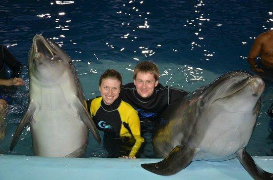 Dolphina Park : масса позитивных эмоций от плавания с дельфинами