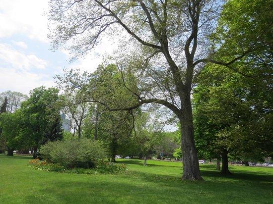Gray Line Toronto: Parkland at Niagara Falls
