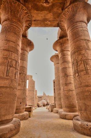 Ramesseum (Mortuary Temple of Ramses II): La grande salle hypostyle : les colonnes papyriformes à chapiteau ouvert.