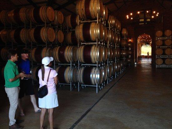 Camino Wine Tours: Informative tours.