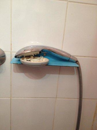 Hotel Richard: pomme de douche cassée et irréparable