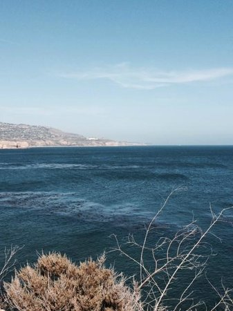 Terranea Resort : Again, the view from our patio