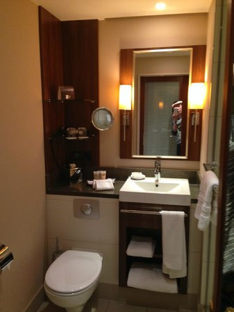 Pullman Cologne: Bathroom