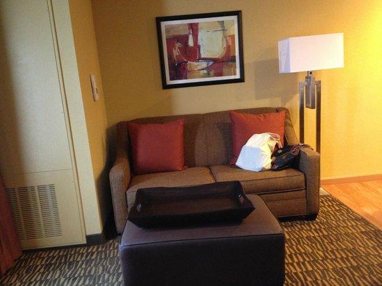 Homewood Suites Tampa Brandon: Sleeper sofa