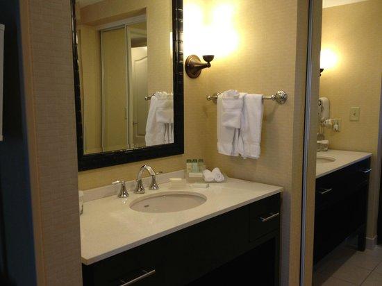 Homewood Suites Tampa Brandon: Bathroom sink
