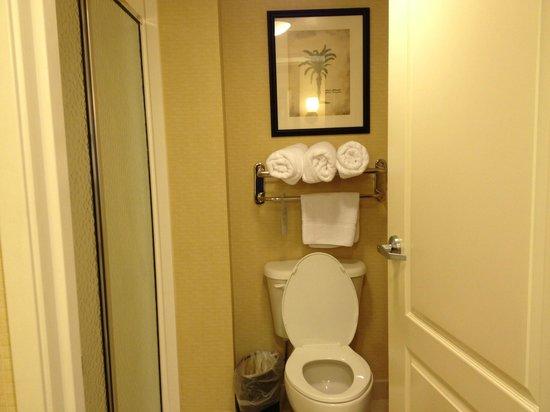 Homewood Suites Tampa Brandon: Bathroom, toilet