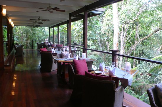Silky Oaks Lodge: Restaurant in der Natur