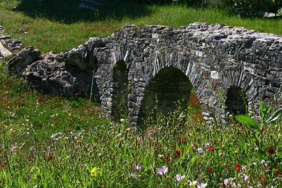Conjunto Arqueológico Baelo Claudia: Baelo Claudia