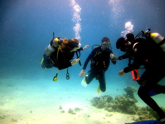 Eazy Divers: With Tito