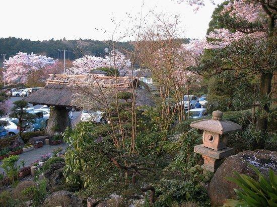Gotemba Kogen Toki no Sumika: Вид из онсена