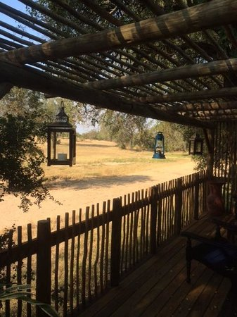 Notten's Bush Camp : Room with a view