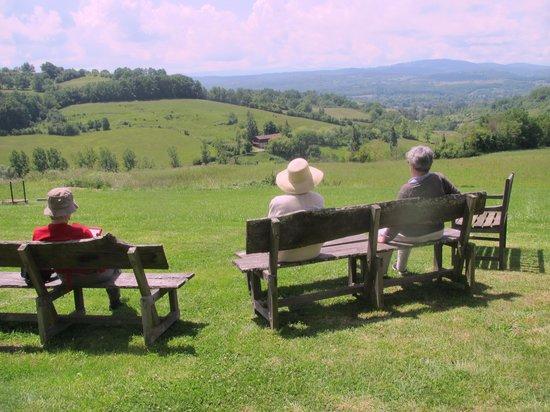 Manzac d'en Bas: Enjoying the view