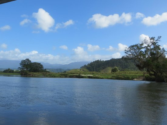 Crocodile Express Daintree River Cruises : Up river view