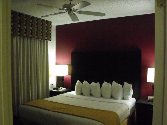 Quality Suites Lake Buena Vista: King Bed